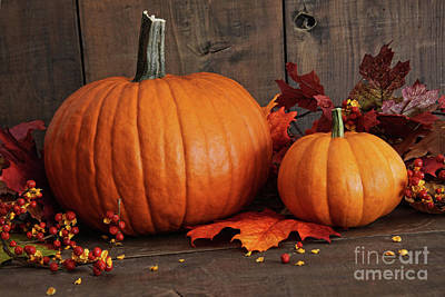 Harvested Pumpkins On Wood Table  Poster by Sandra Cunningham