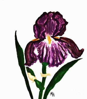 Iris Poster by Marsha Heiken