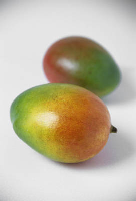Mangoes Poster by Veronique Leplat