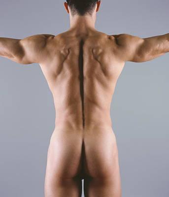 Man's Body Poster by Cristina Pedrazzini