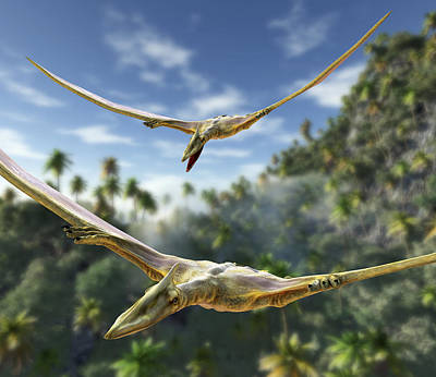 Pterosaurs Flying, Computer Artwork Poster by Roger Harris