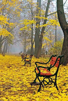 Red Benches In The Park Poster by Jaroslaw Grudzinski
