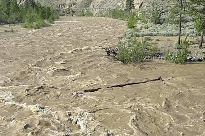 Spring Flood, Nicola River, Canada Poster by Kaj R. Svensson