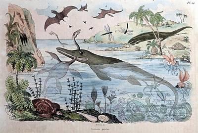 1834 Guerin Engraving 'extinct Animals Poster by Paul D Stewart