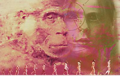 Evolution Poster by Hans-ulrich Osterwalder