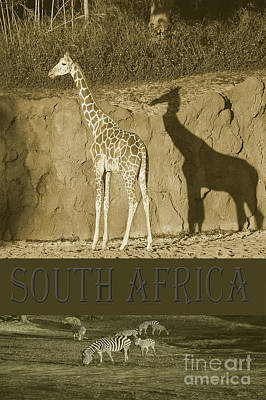 South Africa Poster by Robert Meanor