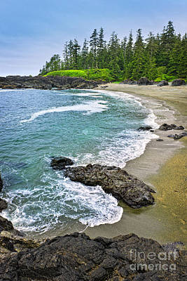 Coast Of Pacific Ocean In Canada Poster by Elena Elisseeva