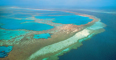 Great Barrier Reef, Australia Poster by Peter Walton Photography