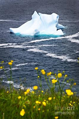 Melting Iceberg Poster by Elena Elisseeva