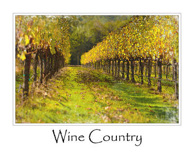 Vineyard Poster by Brandon Bourdages