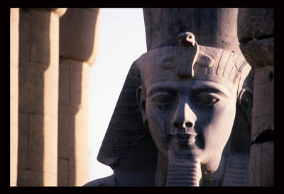 A Stone Statue Of Ramses II Poster by Martin Gray