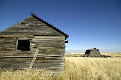 Abandoned Farmstead In Southern Alberta Poster by Pete Ryan