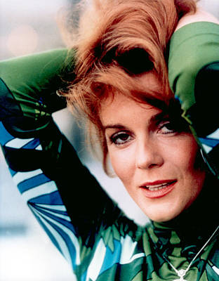 Ann-margret, In A Pucci-style Print Poster by Everett