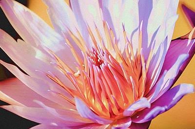 Aquatic Bloom Poster by Julie Palencia