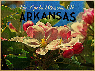Arkansas Apple Blossoms Poster by Flo Karp