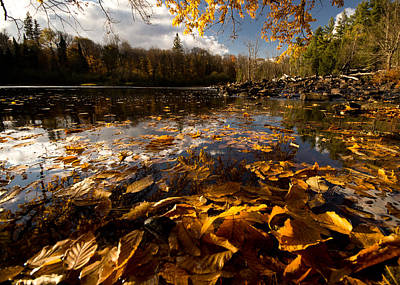 Autumn At Ragged Falls Poster by Cale Best