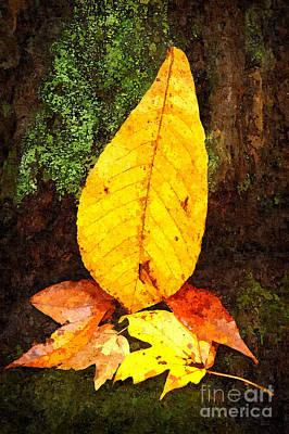 Autumn Centerpiece Poster by Dan Carmichael