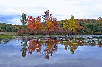 Autumn Diversity Poster by David Rucker