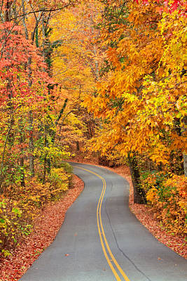 Autumn Drive Signal Mountain Poster by Tom and Pat Cory