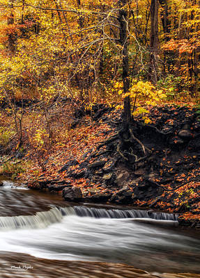 Autumn Flow Poster by Mark Papke