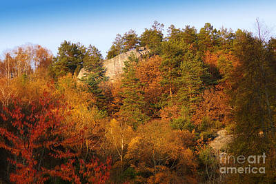 Autumn Forever Poster by Lutz Baar