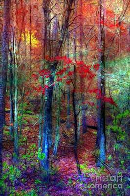 Autumn In Arkansas Poster by Judi Bagwell