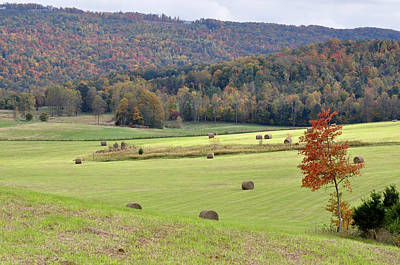 Autumn Valley Hay Bales Poster by Jan Amiss Photography