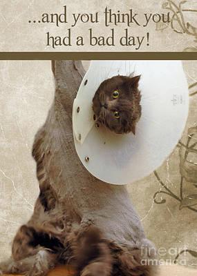 Bad Day Poster by Joann Vitali