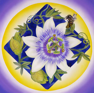 Bee And Passion Flower Poster by Marcia  Perry
