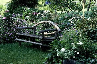 Bench In Garden Poster by David Chapman