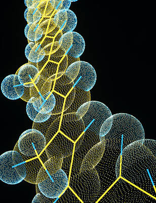 Beta Carotene Molecule Poster by Pasieka