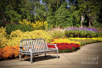 Botanical Beauty Poster by Cheryl Davis