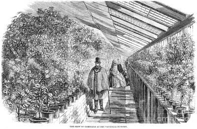 Botany: Vauxhall Gardens Poster by Granger