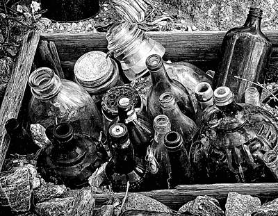 Bottle Garden Poster by Ron Regalado
