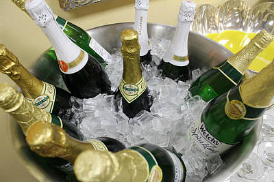 Bowl Of Bubbly Poster by Lindy Spencer