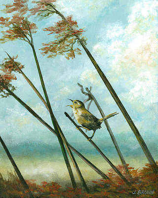 Carolina Wren Poster by John Brown