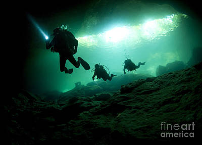 Cavern Divers Enter Cenote System Poster by Karen Doody