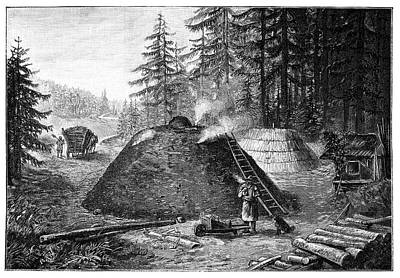 Charcoal Production, 19th Century Poster by