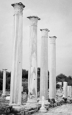 Columns In The Central Courtyard And Stoa Gymnasium And Baths In The Ancient Site Of Salamis Poster by Joe Fox