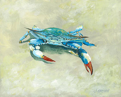 Crab On Beach Poster by John Brown