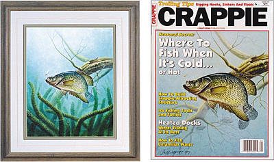 Crappie And Coon Tail Cover Poster by JQ Licensing