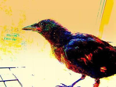 Crow Walk Poster by YoMamaBird Rhonda