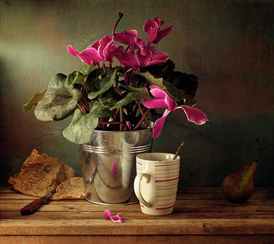Cyclomen Flower Pot And Cup With Strips Poster by Copyright Anna Nemoy(Xaomena)