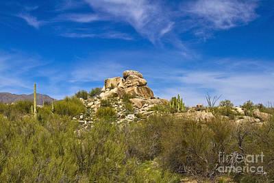 Desert Boulders Poster by Scott Pellegrin
