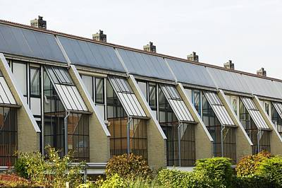 Domestic Solar Panelling Poster by Colin Cuthbert