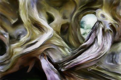 Driftwood Window Poster by Suni Roveto