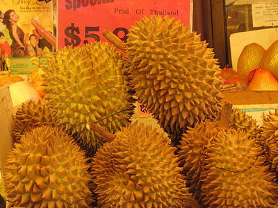 Durian Fruit Poster by Alfred Ng