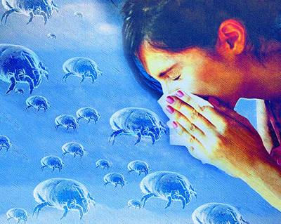 Dust Mite Allergy, Conceptual Artwork Poster by Hannah Gal