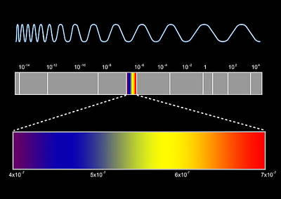 Electromagnetic Spectrum Poster by Seymour