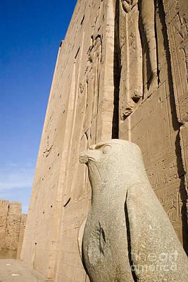 Falcon Statue At Edfu Poster by Darcy Michaelchuk